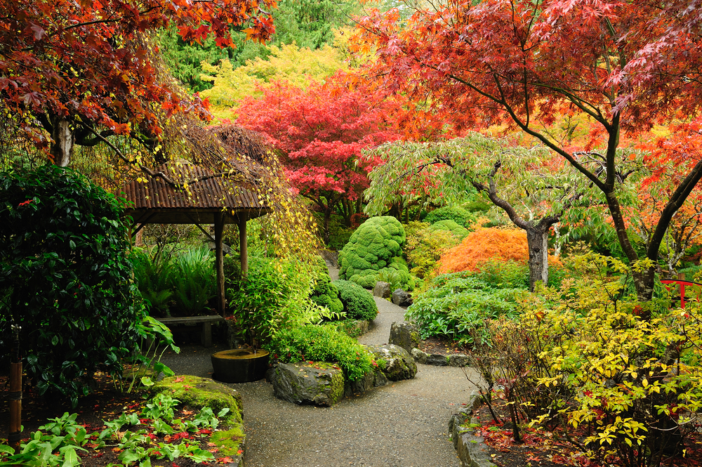 Tips for Landscaping in Victoria British Columbia